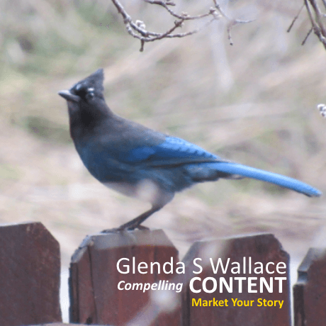 Learn more about websites by Glenda S Wallace & her GSWrite Communications